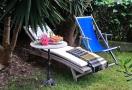 Relaxen unter Palmen