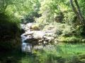 Der Badeteich (1 km)