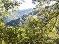 Villatalla vom Wald aus